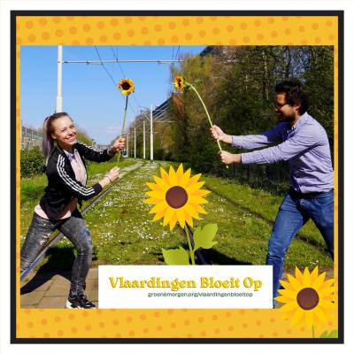 Zonnebloem Challenge in Vlaardingen, doe je mee?